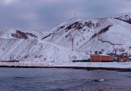 Дезинсекция Экоз в Южно-Сахалинске