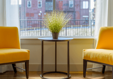 Клопы в квартире или частном доме: что делать?